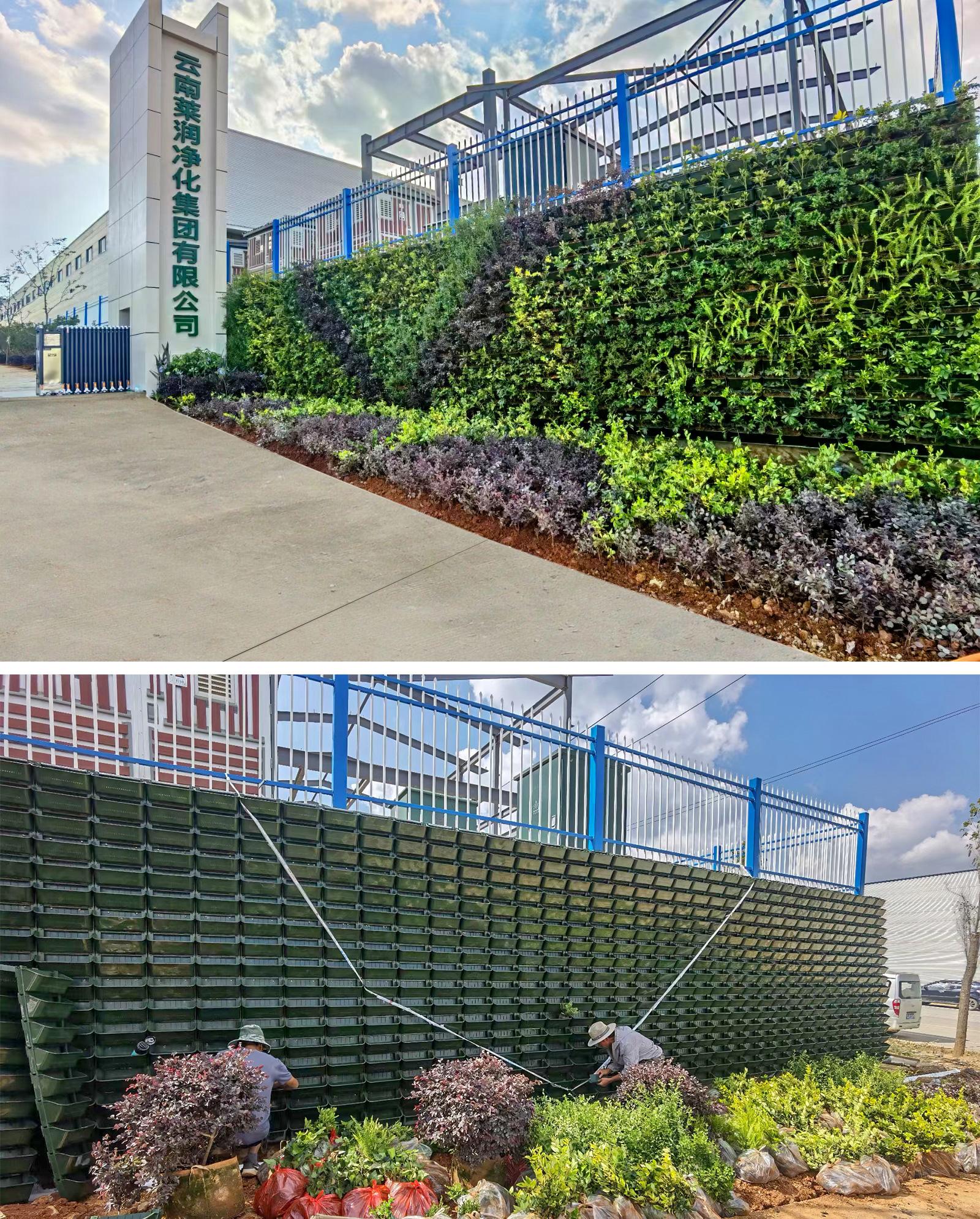 公司主营围挡花盆、植物墙种植盒、立体绿化、垂直绿化、植物墙、绿植墙等。